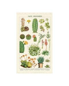 Cacti Succulents Tea Towel