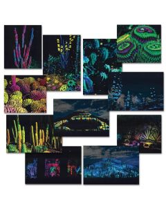 Electric Desert Postcard Set