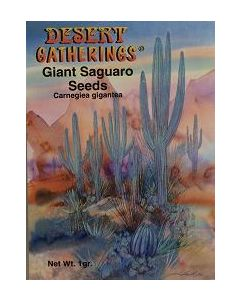 Giant Saguaro Seeds