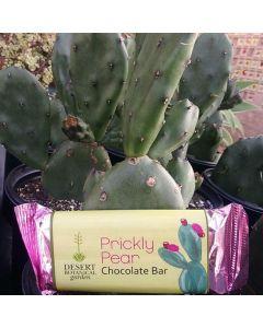 Milk Chocolate Prickly Pear Bar